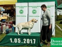 2017-05-01_majówka00004